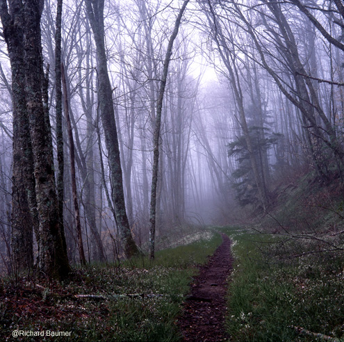 Smoky Mountains National Park